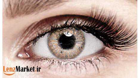 لنز چشم عسلی 1