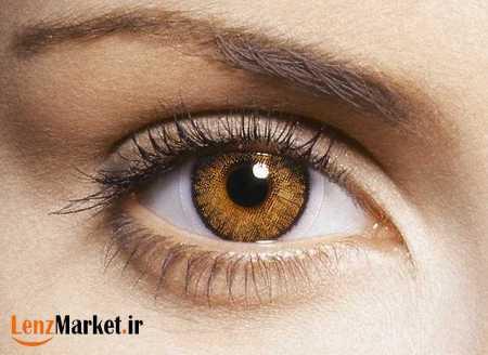 لنز چشم عسلی 66
