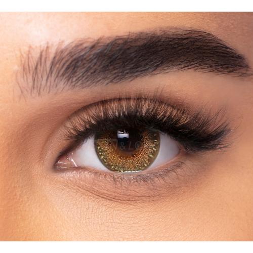 لنز فرشلوک چیست