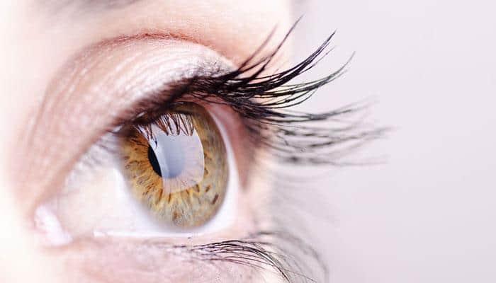 بیماری های پلک چشم